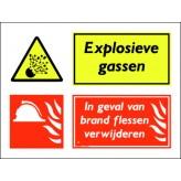 Explosieve gassen